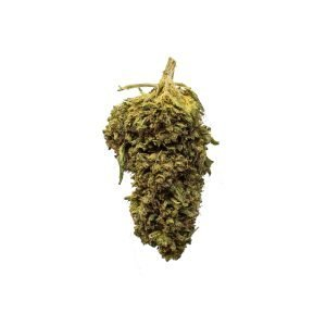 Hemp flower buds - Buster Select Hemp CBG - from Longleaf Provisions - the best CBD in Winston-Salem