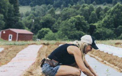The Top Things to Know About the Southeast Hemp Association